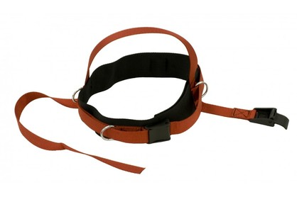Headstrap for Pulleys
